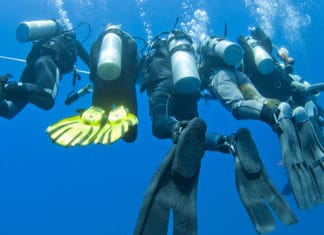 The-Best-Scuba-Fins