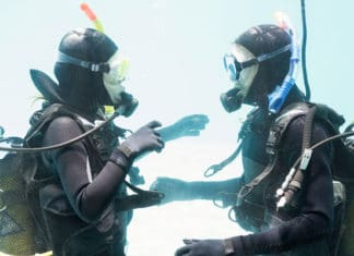 The-Best-Dive-Hoods