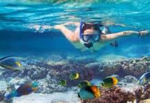 Choosing-Your-Snorkel