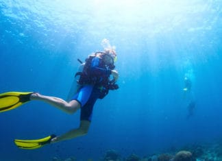 What-Your-First-Scuba-Dive-Will-Look-Like