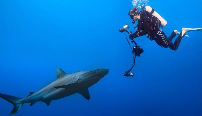 The-Best-Underwater-Strobes