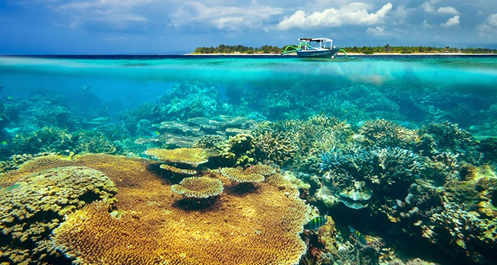 snorkeling-in-komodo-island-indonesia