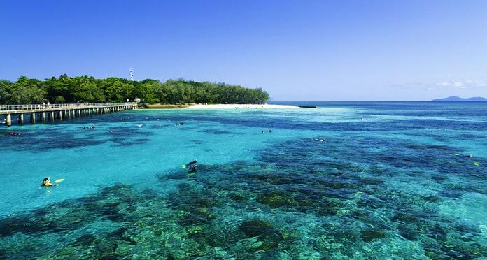 snorkeling-in-the-great-barrier-reef-australia