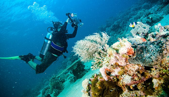 How-To-Choose-The-Best-Diving-Camera