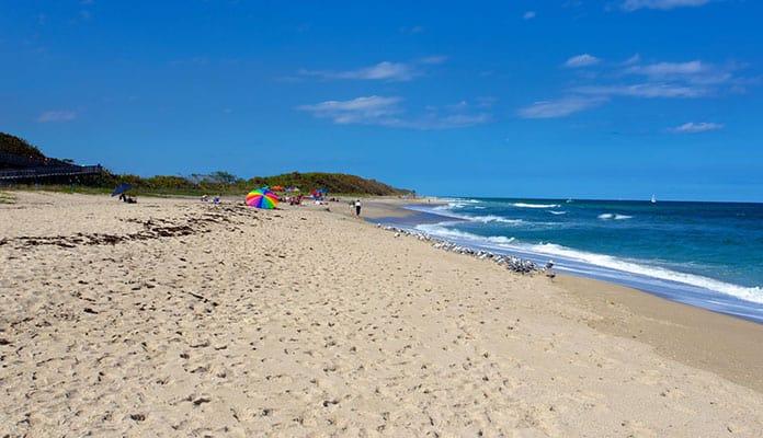 John-D.-MacArthur-Beach-State-Park
