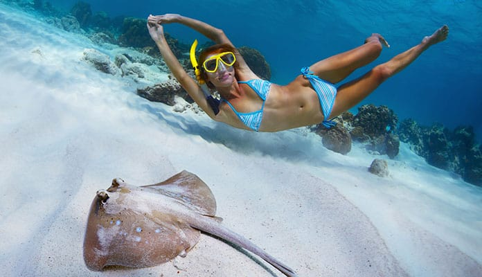 Knowing-Where-To-Snorkel