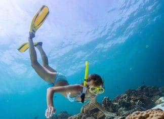 the-best-freediving-fins