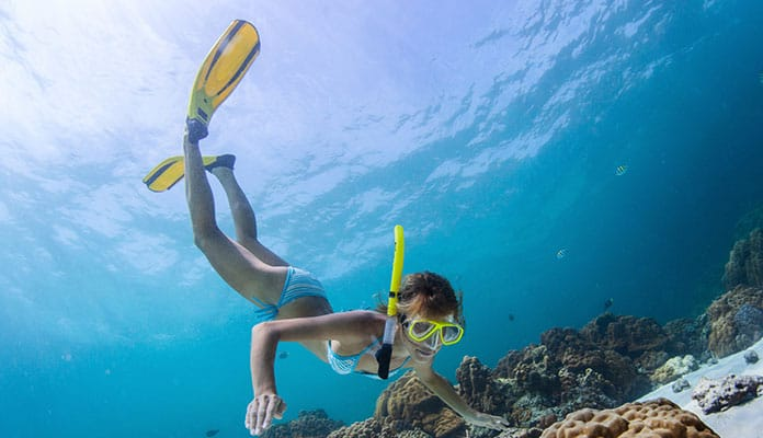10 Best Freediving Fins In 2019 [Buying Guide] Reviews