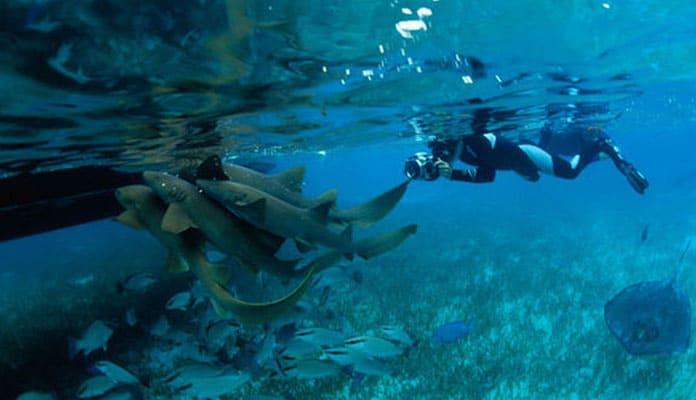General-Belize-Snorkeling-Tips