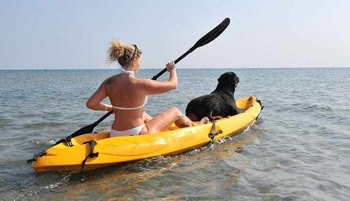 10 Best Kayaks For Dogs in 2018