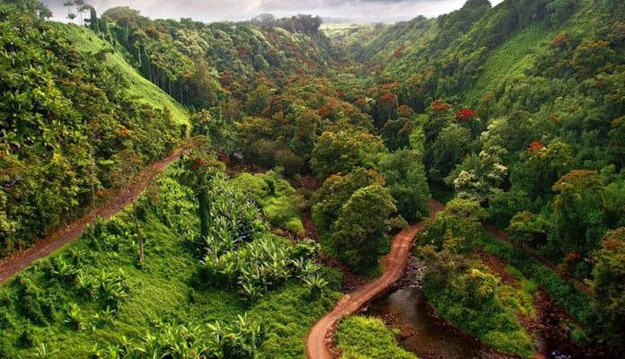 Oahu-Canyoneering