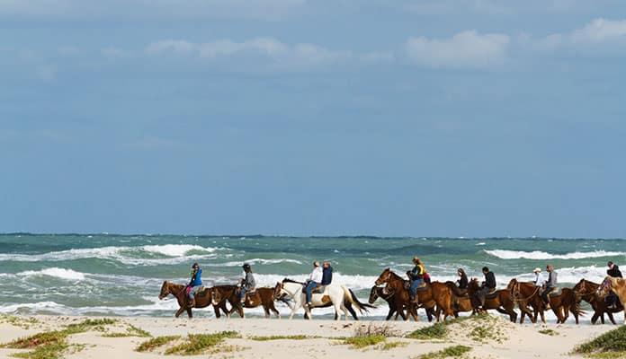 Oahu-Horseback