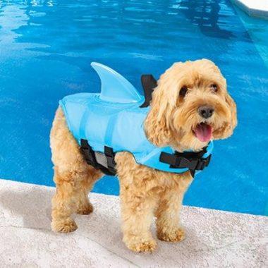 Swimways Sea Squirts Dog Life Vest
