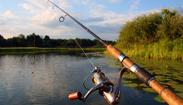 10 Best Bass Fishing Rods in 2020 [Buying Guide] Reviews