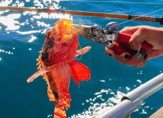Best_Fishing_Pliers