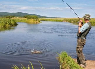 Best_Fly_Fishing_Rods