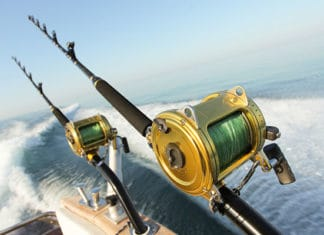Fishing_Rod_and_Reel