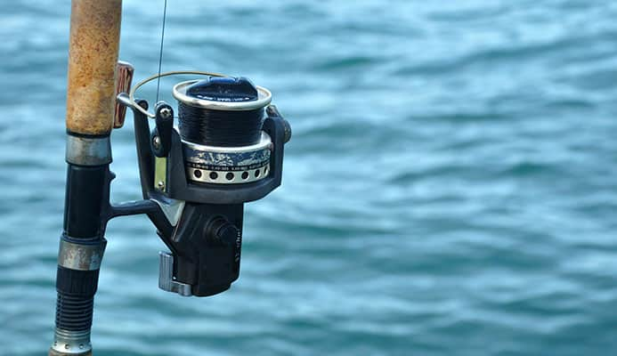 How_to_choose_the_Best_Saltwater_Spinning_Reel