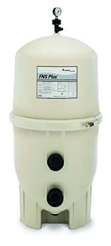 Pentair Plus DE Pool Filter