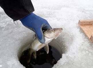 Best_Ice_Fishing_Gloves