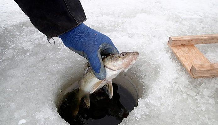 10 Best Fishing Spots in Minnesota - Globo Surf