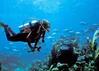 How_to_Prevent_Vertigo_While_Scuba_Diving