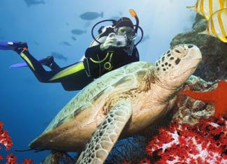 The_Most_Common_Scuba_Diving_Injury_And_How_To_Avoid_It