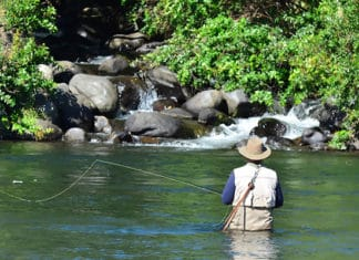 10_Best_Fly_Fishing_Destinations_In_The_World