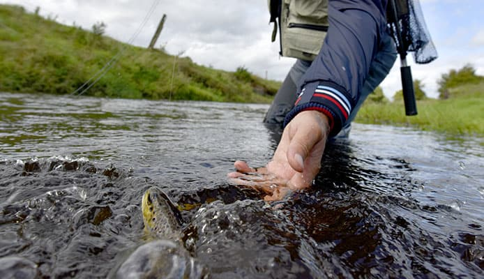 10_Step_Guide_On_How_to_Catch_Trout