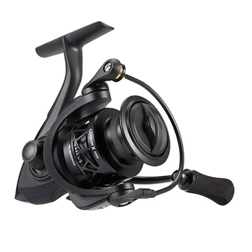 Piscifun Carbon X Spinning Reel for Bass