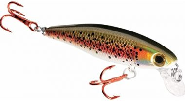 Dynamic Lures Trout Fishing Lure