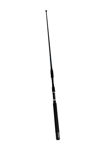 Sabiki Fishing Rod Bait Rod