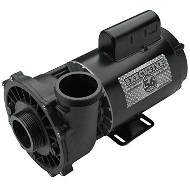 Executive Spa Pump 4hp 3711621-1d by Waterway Plastics