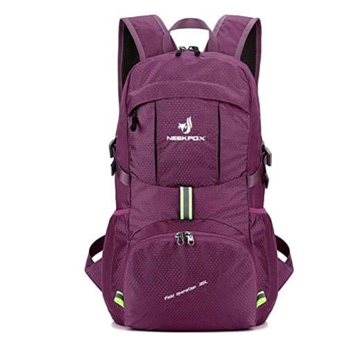 NEEKFOX Foldable Lightweight Backpack
