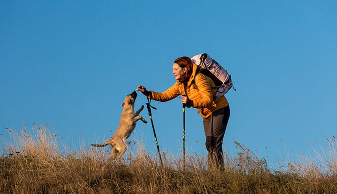 Hiking_And_Backpacking_With_A_Dog