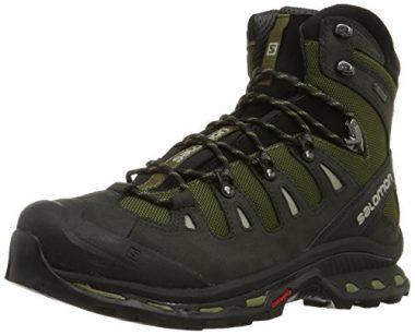 Salomon Men's Quest 4D 2 GTX Hiking Boots