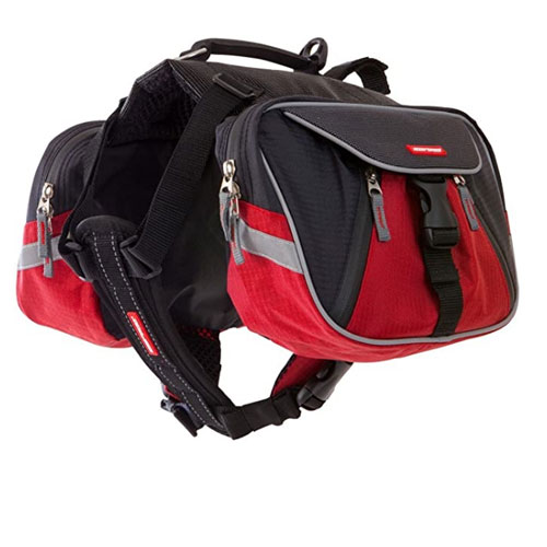 EzyDog Summit Dog Backpack