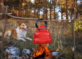 How_to_Make_Coffee_While_Camping_Our_Favorite_Ways_To_Brew