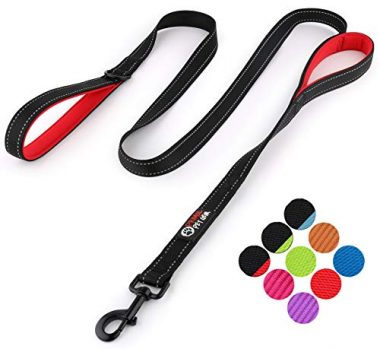 Primal Pet Gear Double Handle Leash Dog Camping Gear