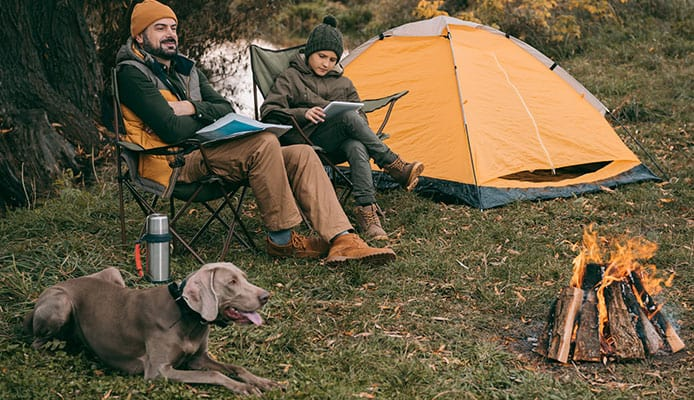 Why_Do_I_Need_Dog_Camping_Gear