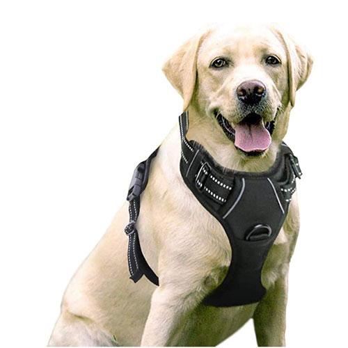 RABBITGOO No-Pull Dog Harness