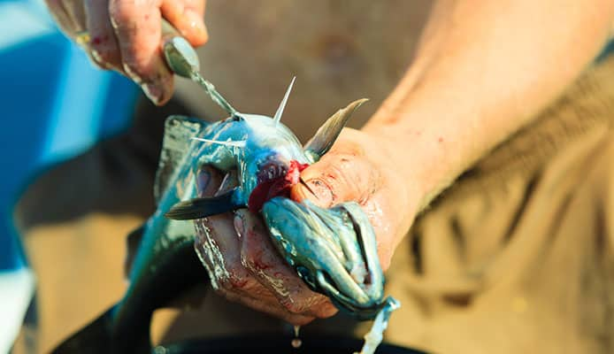 3_Easy_Ways_To_Get_Fish_Smell_Off_Your_Hands
