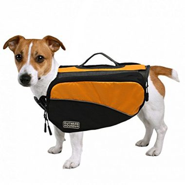 Kyjen Outward Hound Dog Backpack