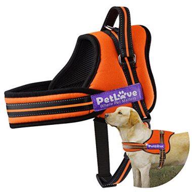 PetLove No Pull Dog Harness
