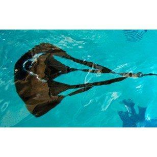 SuperStroke StrechCordz Drag Belt Tow Tether Swim Parachute
