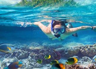 10_Best_Dive_Sites_In_Aruba