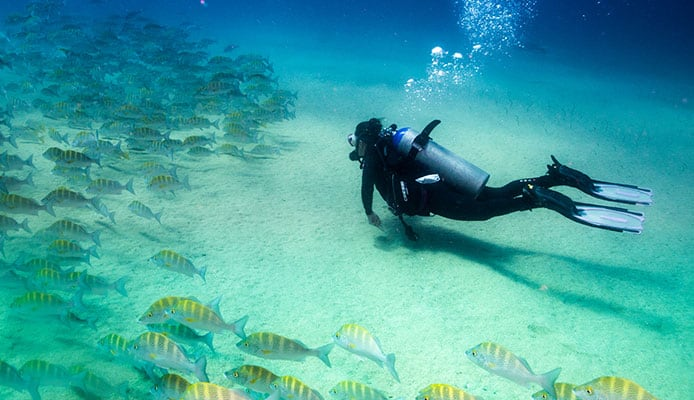10_Best_Dive_Sites_In_Cozumel