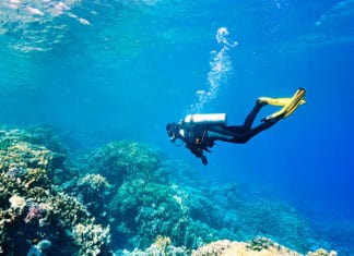 10_Most_Common_Scuba_Myths_Debunked