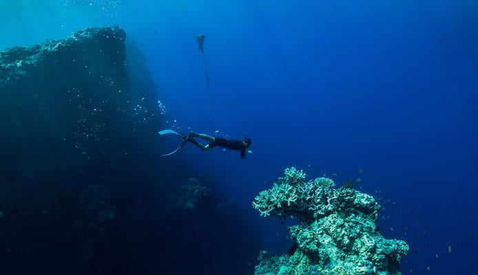 Beginner_Night_Scuba_Diving_Guide