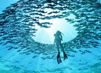 What_Is_Confined_Water_In_Scuba_Diving
